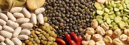 Cooperación desde la Soberanía Alimentaria y los Feminismos