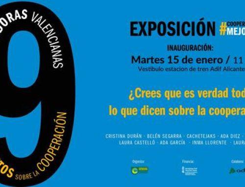 ¿crees que es verdad todo lo que dicen sobre la cooperación? Exposición del 15 al 27 de enero. Vestíbulo estación de tren Alicante