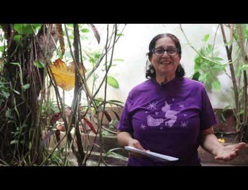 «Memoria Colectiva de Mujeres»